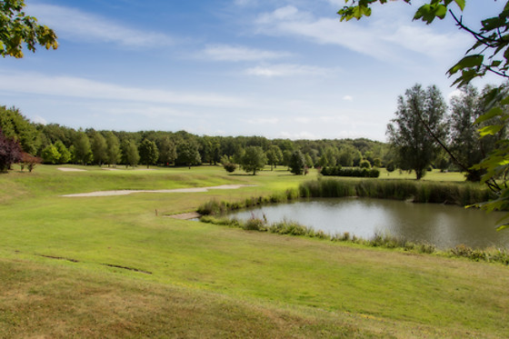 Ugolf Metz Cherisey - photo 1