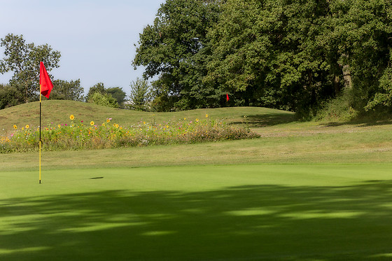 Ugolf Metz Cherisey - photo 4