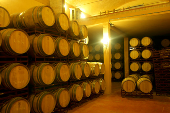 BODEGAS MACAYA - photo 2