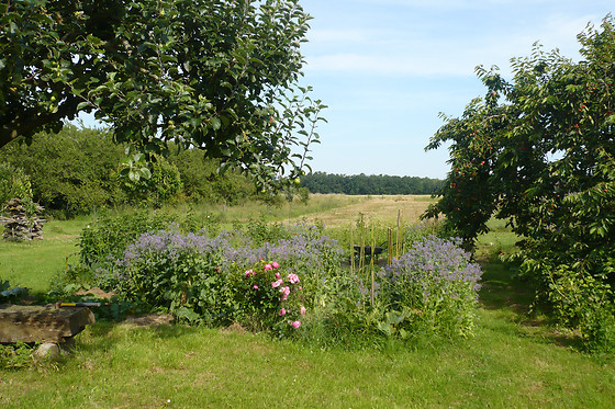 Lilac Cottage - photo 28