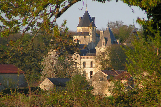 Château de Ternay - photo 14