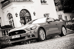 Tour en Ford Mustang - Body Drive Experience - Montigny Le Tilleul (Hainaut)