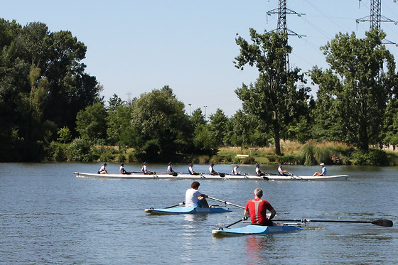 Toulouse Aviron Sports et Loisirs - photo 3