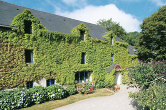 Le Manoir du Rodoir - photo 1