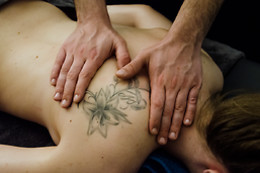Massage en duo chez Home Massage Toulouse (31)